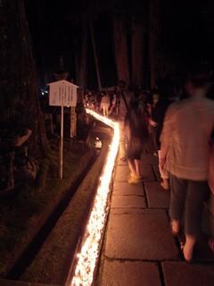 ろうそくまつり2012(ローソク)