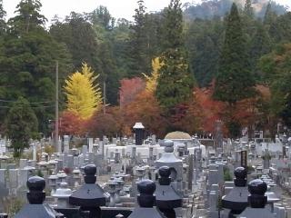 仏舎利宝塔より見た高野山の紅葉