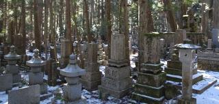 墓石群風景