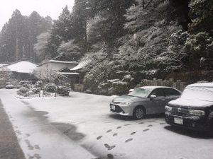 春でもまだまだ大雪の高野山