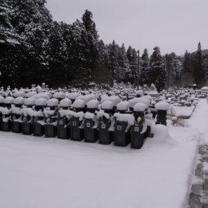 高野山の雪景色