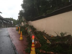 高野山・台風被害