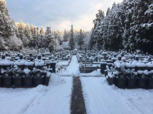 高野山積雪